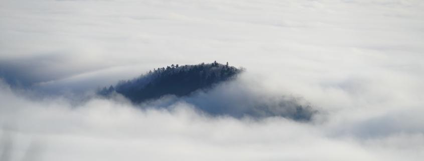 Ohne Beleg wandelt man im Nebel